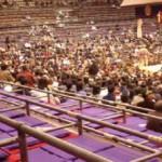 大相撲 両国国技館の裏側に迫る!【お茶屋さんの仕事】をレポートの写真