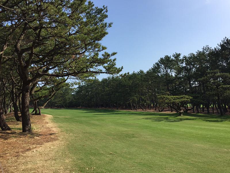 男子ゴルフツアー【ダンロップフェニックストーナメント】